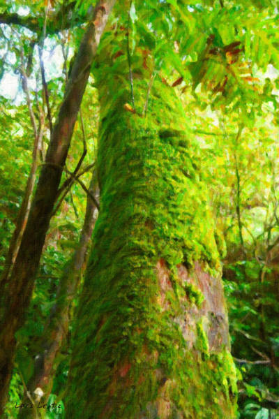 Painting - Moss-covered Tree In The Tropical Rainforest by Lars Lentz