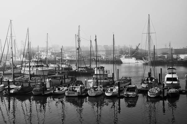 Photograph - Moss Landing Harbor by Mick Burkey