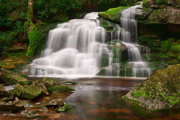 Photograph - Moss On The Rocks At Elakala Falls by Michael Blanchette