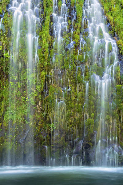 Moss Green Photograph - Mossbrae Falls by Hua Zhu