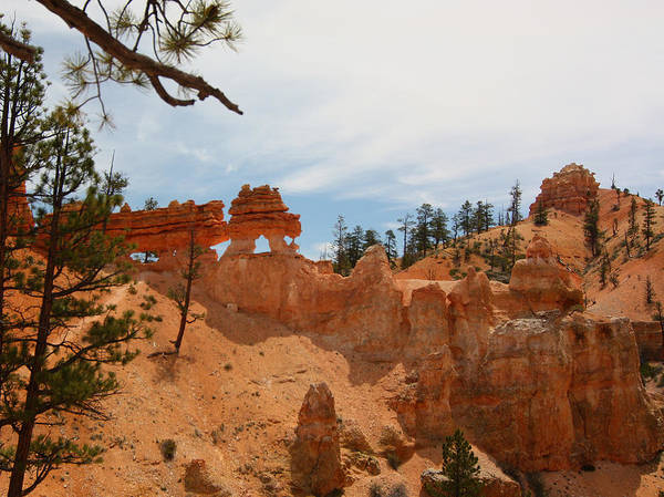 Photograph - Mossey Creek Trail Arches by Jean Clark