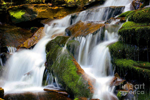 Wall Art - Photograph - Mossy Falls by Paul W Faust -  Impressions of Light