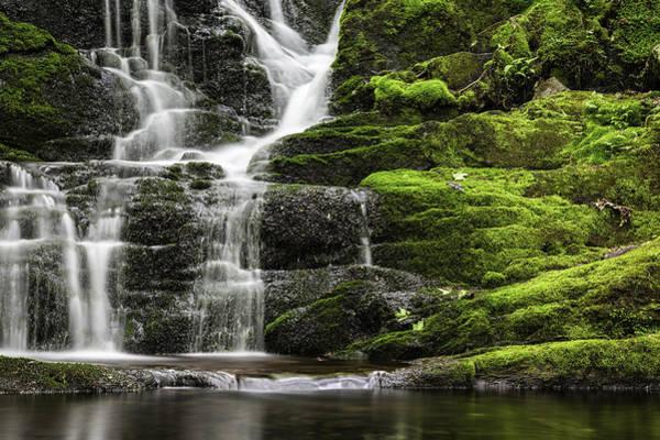 Photograph - Mossy Falls by Sara Hudock