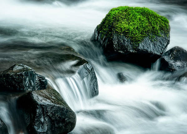 Photograph - Mossy Rock by Brian Bonham