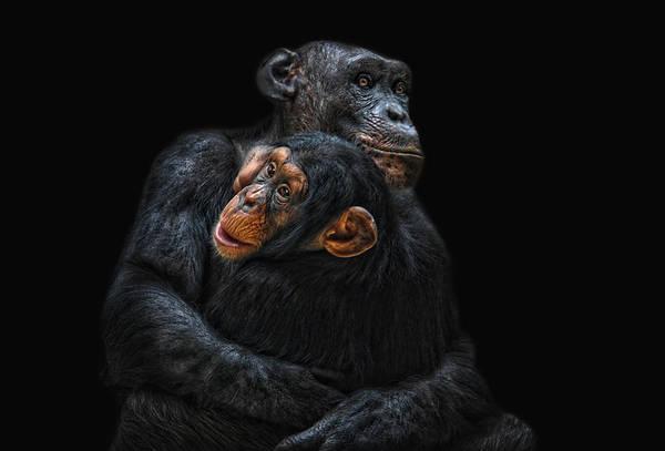 Wall Art - Photograph - Mother And Child by Joachim G Pinkawa