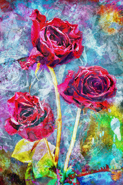 Photograph - Mothers Day Rose by Steven Llorca