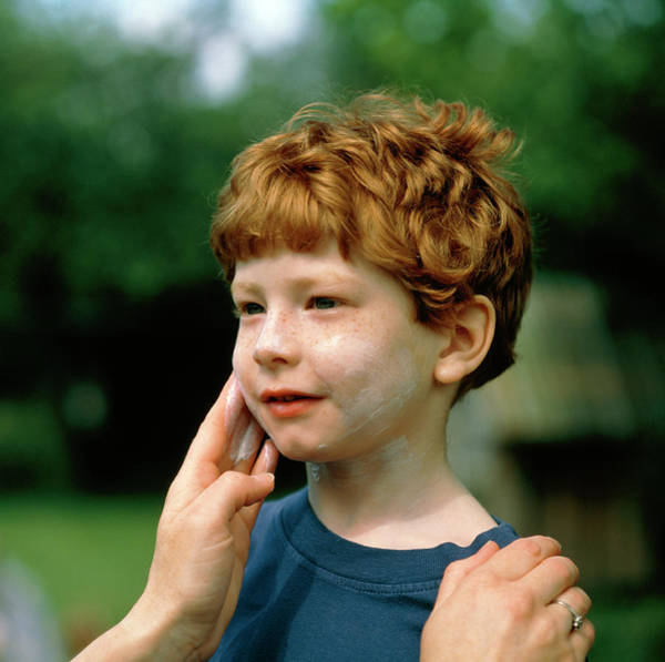 Skin Care Wall Art - Photograph - Mother's Hands Apply Suncream To Face Of Fair Boy by Chris Priest/science Photo Library