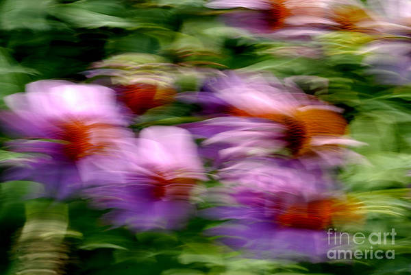 Photograph - Motion Series - 234 by Paul W Faust -  Impressions of Light