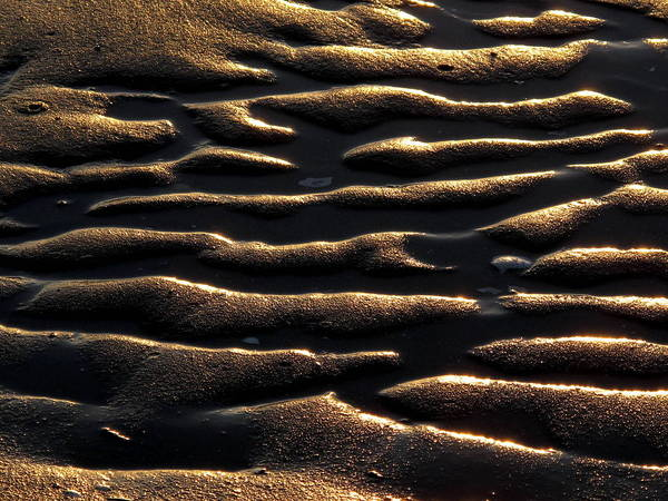 Photograph - Moulded Sand by Suzy Piatt