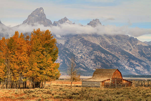 Foilage Photograph - Moulton Barn - Grand Tetons by Donna Kennedy