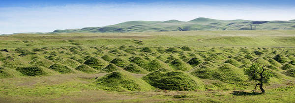 Corral Photograph - Mound Son A Landscape, Corral Hollow by Panoramic Images