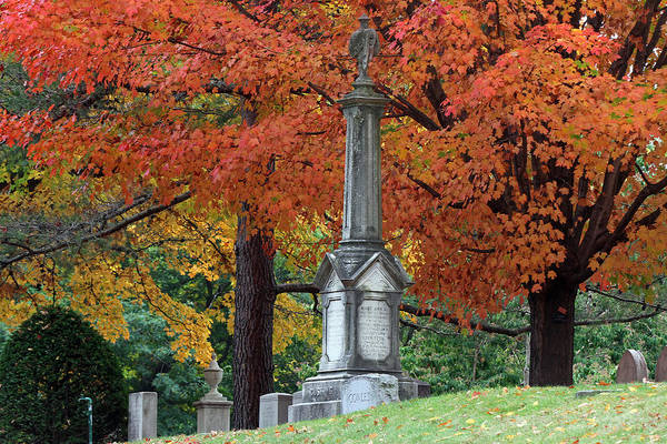 Photograph - Mount Auburn Cemetery by Juergen Roth
