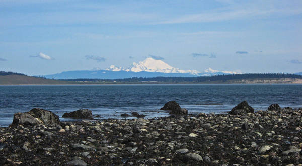 Port Townsend Photograph - Mount Baker From Port Townsend by Laurie Stewart
