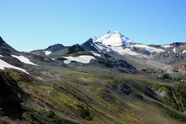 Photograph - Mount Baker by Gerry Bates