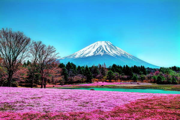 Japanese Culture Photograph - Mount Fuji In Spring And Blue Sky by Michaël Ducloux