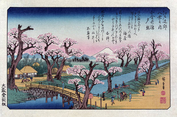 Wall Art - Photograph - Mount Fuji, Koganei Bridge, 1838 by Science Source