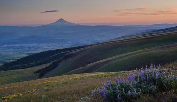 Rowena Photograph - Mount Hood Fields Vista by Mike Reid