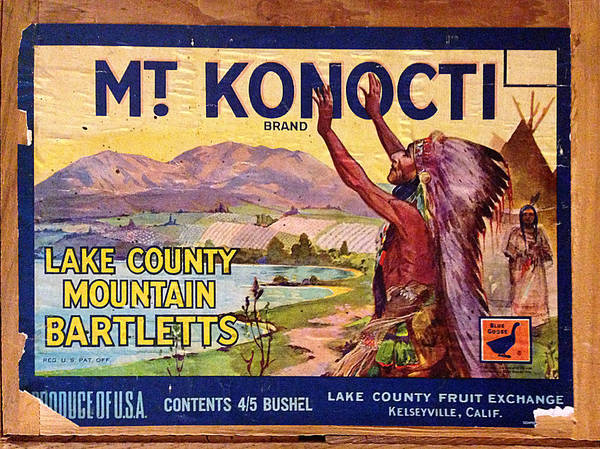 Photograph - Mount Konocti Crate Label by Richard Reeve