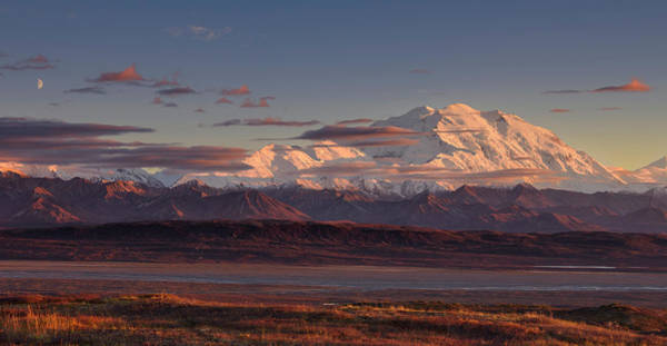 Mounted Photograph - Mount Mckinley - Denali National Park by Roberto Marchegiani