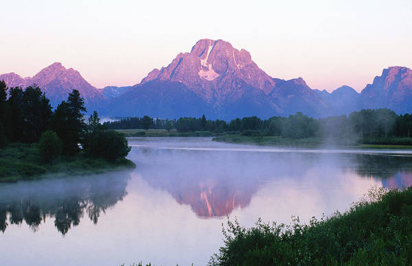 Grass Snake Photograph - Mount Moran Reflected In Snake River At by David C Tomlinson