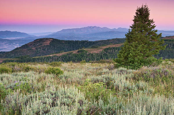 Skyline Drive Photograph - Mount Nebo At Wasatch Mountains, From by Witold Skrypczak