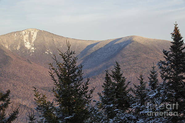 Photograph - Mount Flume - Franconia Notch State Park New Hampshire U by Erin Paul Donovan