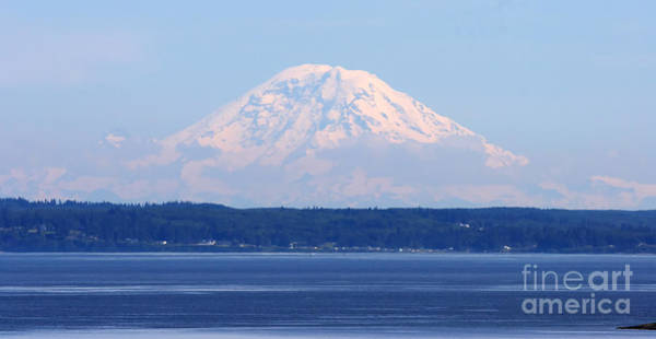 Photograph - Mount Rainier by Tap On Photo