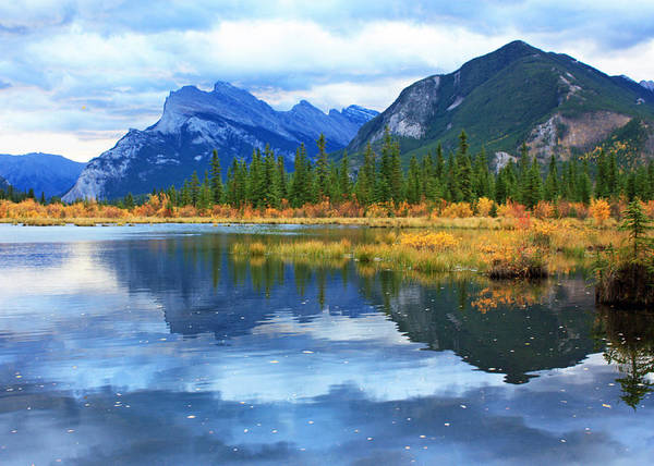 Photograph - Mount Rundle by Gerry Bates