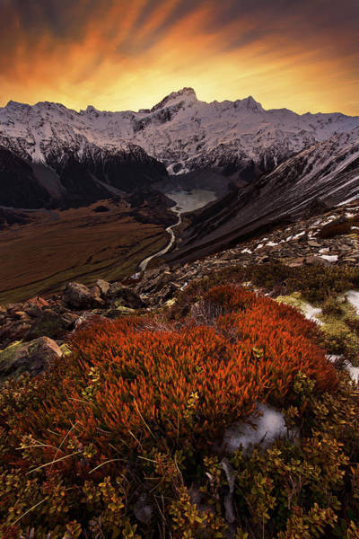 Mounted Photograph - Mount Sefton by Yan Zhang