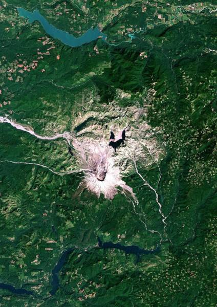 Landsat 7 Wall Art - Photograph - Mount St Helens Volcano by Planetobserver/science Photo Library