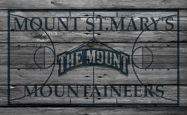 St. Marys Photograph - Mount St Marys Mountaineers by Joe Hamilton