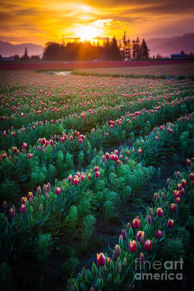 Mount Vernon Photograph - Mount Vernon Morning by Inge Johnsson