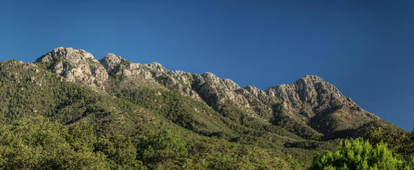 Coronado National Forest Photograph - Mount Wrightson From Madera Canyon by Panoramic Images