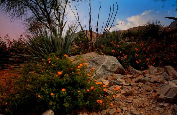 Rancho Mirage Digital Art - Mountain Beauty In Rancho Mirage Ca. by Sherri's - Of Palm Springs