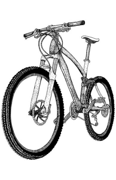 Wall Art - Drawing - Mountain Bike by Karl Addison