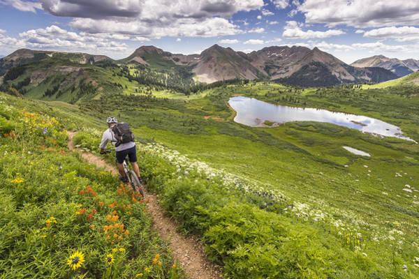 Mountain Biker On Green Trail Art Print by Image Source RF/©Whit Richardson