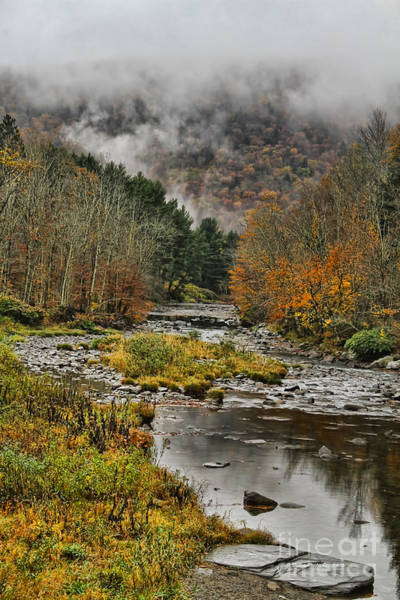 Catskills Photograph - Mountain Colors And Fog by Deborah Benoit