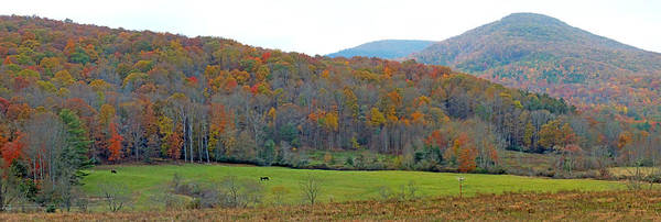 Photograph - Mountain Country Valley In The Fall by Duane McCullough