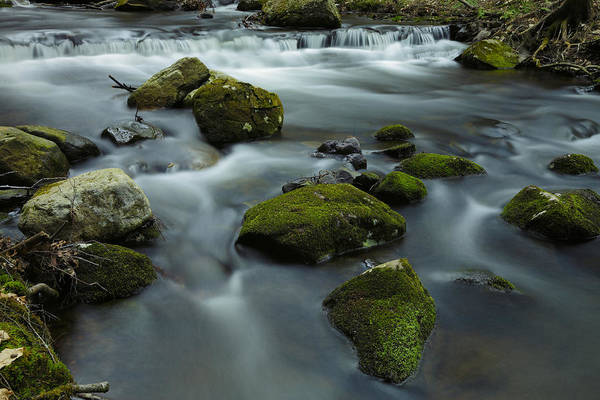 Photograph - Mountain Creek In Stokes State Forest by Rick Berk