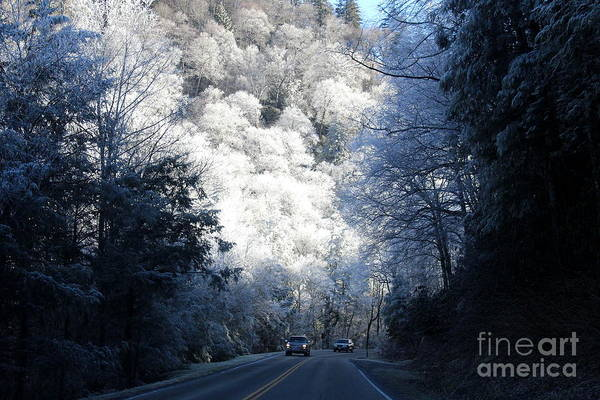 Photograph - Mountain Drive by Jeanne Forsythe