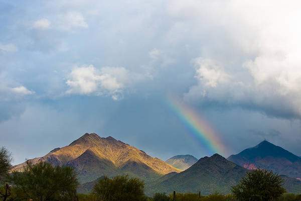 Photograph - Mountain Gold by Paul Johnson