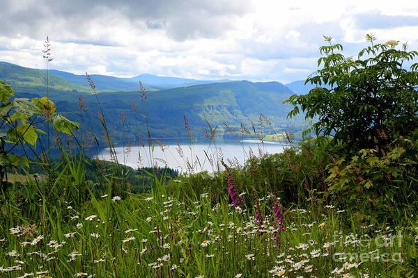 Photograph - Mountain Lake Viewpoint by Carol Groenen