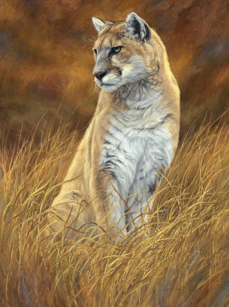 Lions Painting - Mountain Lion by Lucie Bilodeau