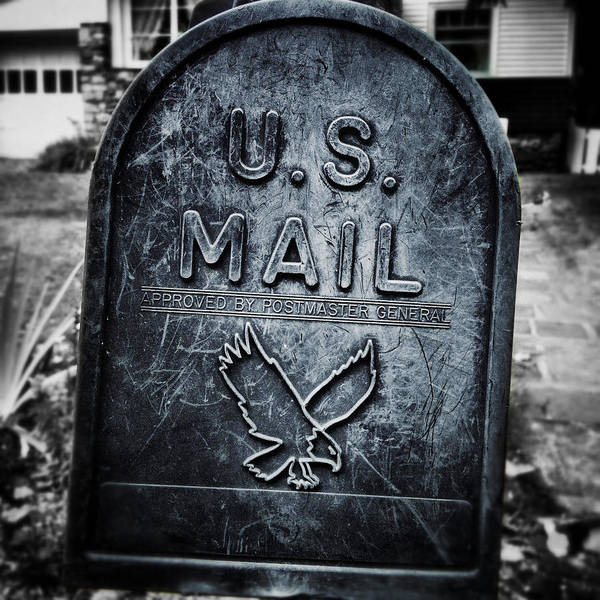 Photograph - Mountain Mail by Natasha Marco