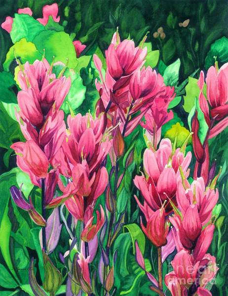 Wall Art - Painting - Mountain Meadows' Paintbrush by Barbara Jewell