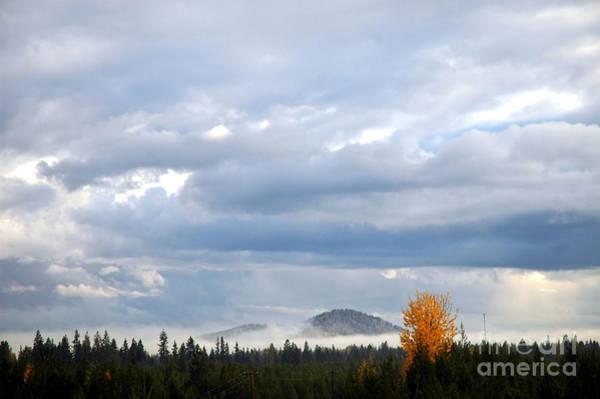 302p Mountain Mist Art Print