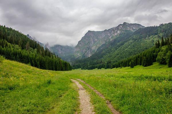 High Tatras Wall Art - Photograph - Mountain Path by Pati Photography