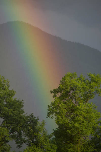 Photograph - Mountain Rainbow by Larry Bohlin