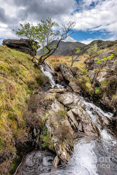 Brook Photograph - Mountain River by Adrian Evans