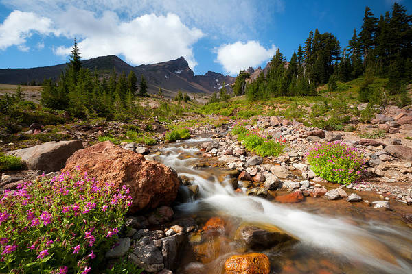 Photograph - Mountain Runoff by Andrew Kumler